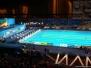 Championnat du monde Fina 2013 a Barcelone