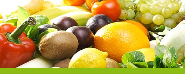 Nutrition holistique